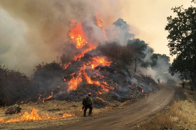 People cause the majority of wildfires