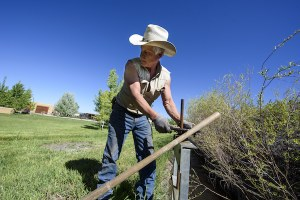 Searching for solutions in the changing rural West
