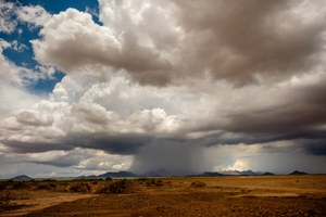 A monsoon summer in the Southwest