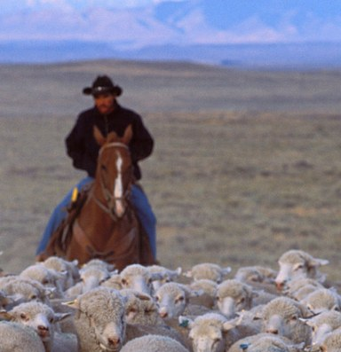Stop attacking pastoralists. We're part of natural resource management, too.