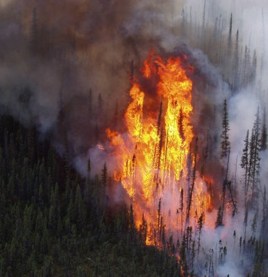 The 2015 fire season hasn't broken any all-time records — yet
