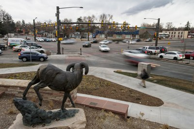 Did Fort Collins grow too big too fast?