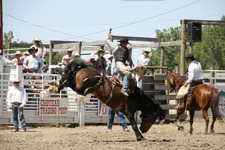 In Montana, rural fairs cling to a tenuous future — High Country News