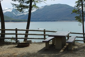 The privatization of public campground management