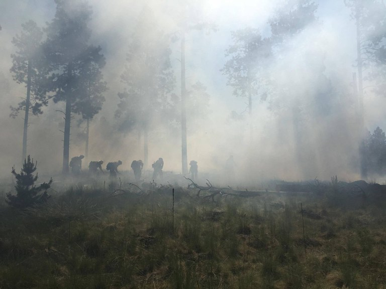 Fires sweep the Southwest