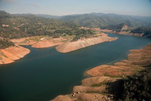 A flood of drought news can reduce water use