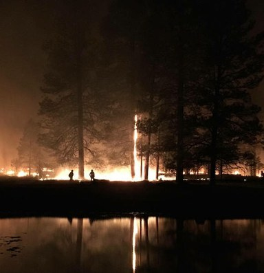 Lessons from the fire line
