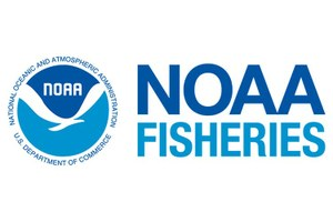What is the National Marine Fisheries Service?