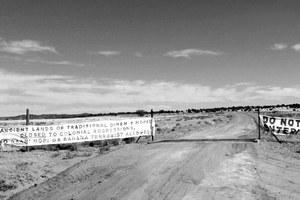 Why are Hopi rangers impounding sheep at Black Mesa?