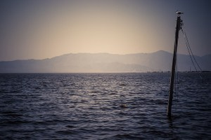Why keep the Salton Sea?