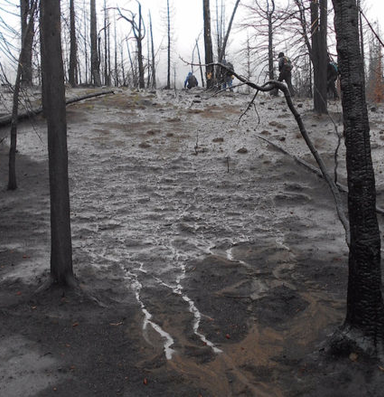 Wildfire archaeology exposes treasures of the dead
