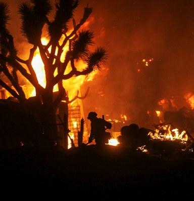 Wildfire rips through California's windy Cajon Pass