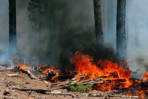 Fire funding fix comes with environmental rollbacks