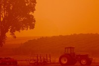 How the West's wildfires impact crops