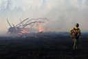 The rise of wildfire-resilient communities