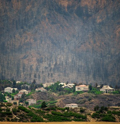 Wildfires don't hurt hot real estate markets