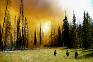 Will Congress fix wildfire funding this year?
