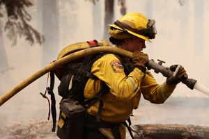 Women in wildfire: What are the reproductive health risks?