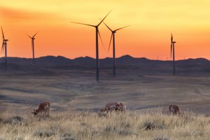 Wyoming needs to stop stalling wind power