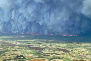 Canada's boreal forests are burning