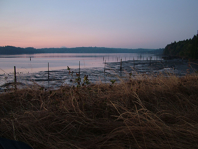 Port Gamble Sunrise