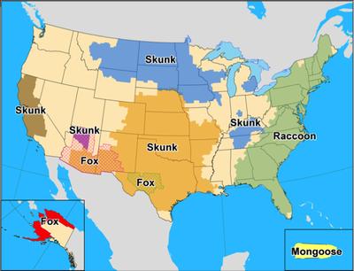 Rabies in U.S.