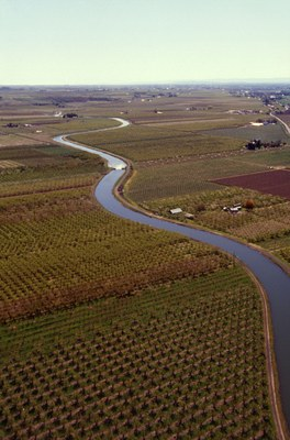 A canal fed by the Yakima River. Courtesy USDA
