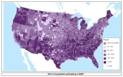 percepntsnapparticipation2010.jpg