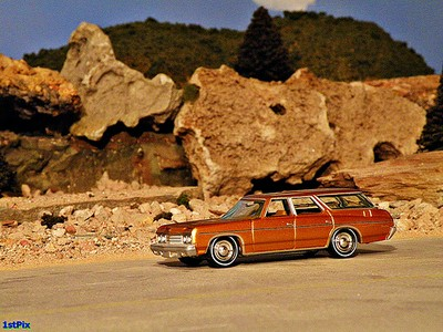 Desert station wagon