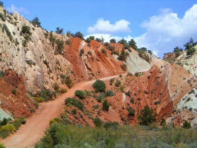 Cottonwood Canyon Road Utah