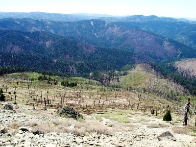 Fireline and Burn-Out Yolla Bolla Wilderness