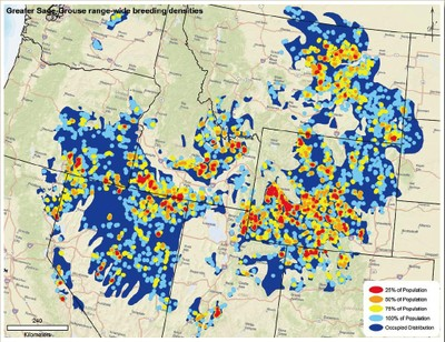 Grouse breeding density map