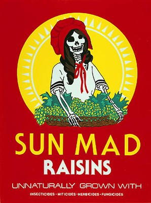 sun mad raisens