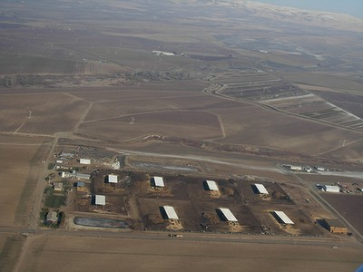 Washington Feedlot