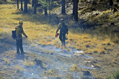 Prescribed burn in Coconino National Forest
