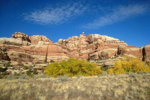 Utah denied claim to road in Canyonlands National Park