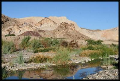 Amargosa River