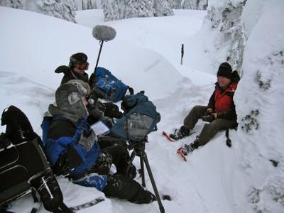 Glacier wolverine interview