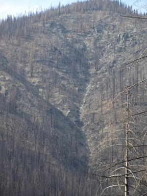 Forest Service Wilderness Burn Out