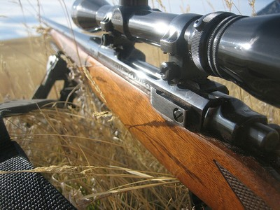 Rifle closeup