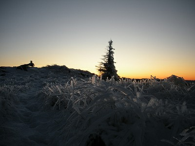 Reader Photo: Ice on Hall Mountain