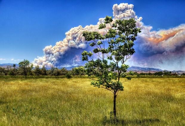 High Park Fire Smoke Plume 620 px