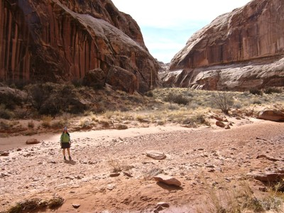 Walking into Horseshoe Canyon