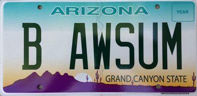 An Arizona vanity plate. Photograph by Flickr user Michael Buist.