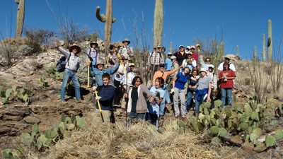 Volunteers in Saguaro