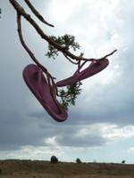 pink flops