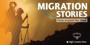 Migration-Closed-.jpg