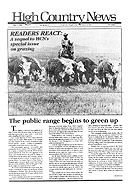 Readers React Grazing Sequel HCN Story Cover