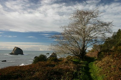 Yurok Coastal Trail