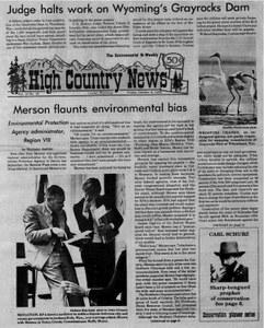 Merson flaunts environmental bias